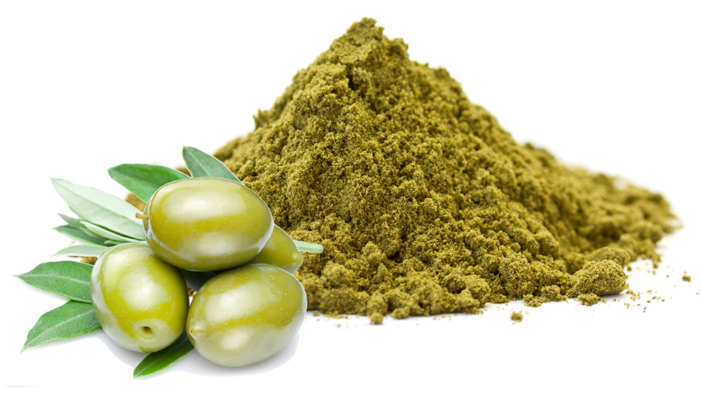product obtained from olive trees